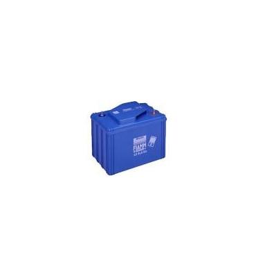 12SLA50 - 12V 50Ah - Batterie Plomb étanche AGM